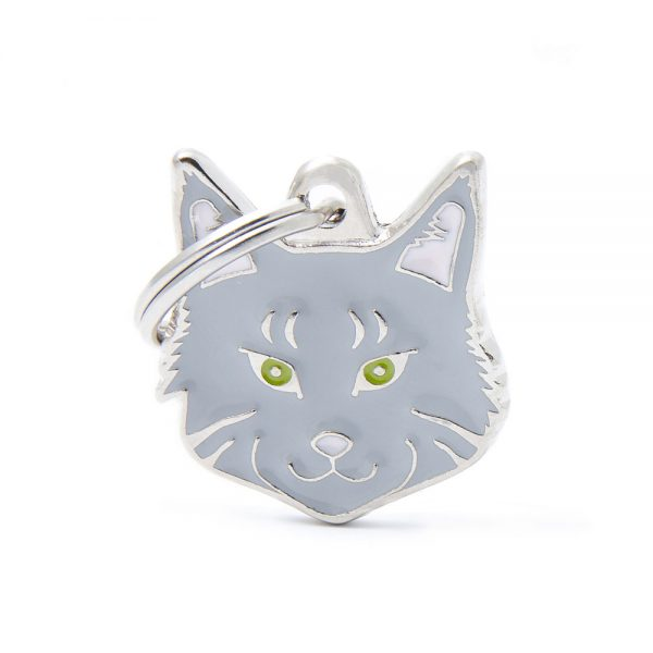 Maine-Coon-Silver-Cat-Tag-ID